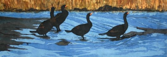 Image entitled Ebb Tide Cormorants