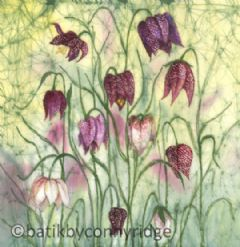Image entitled Fritillaries